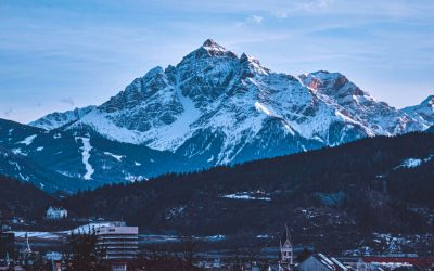 Do you know if your board is Davos Manifesto 2020 compliant?