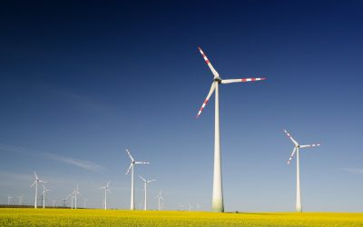 Is It Time To Align Sustainability And Strategic Management?